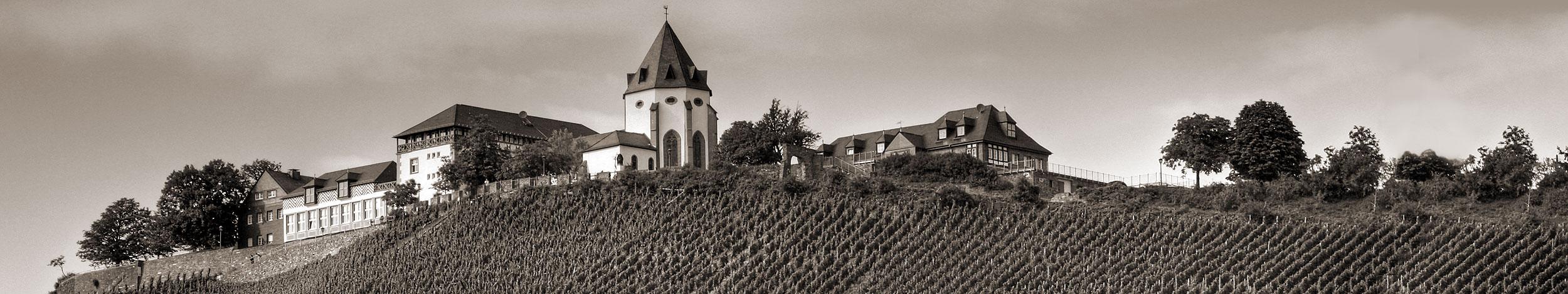 Angebot │ WeinImmobilien